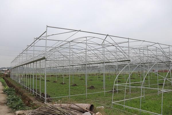 眉山泡菜园区建设